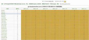 广州美容仪客户通过外贸快车Google优化方案获得高收益
